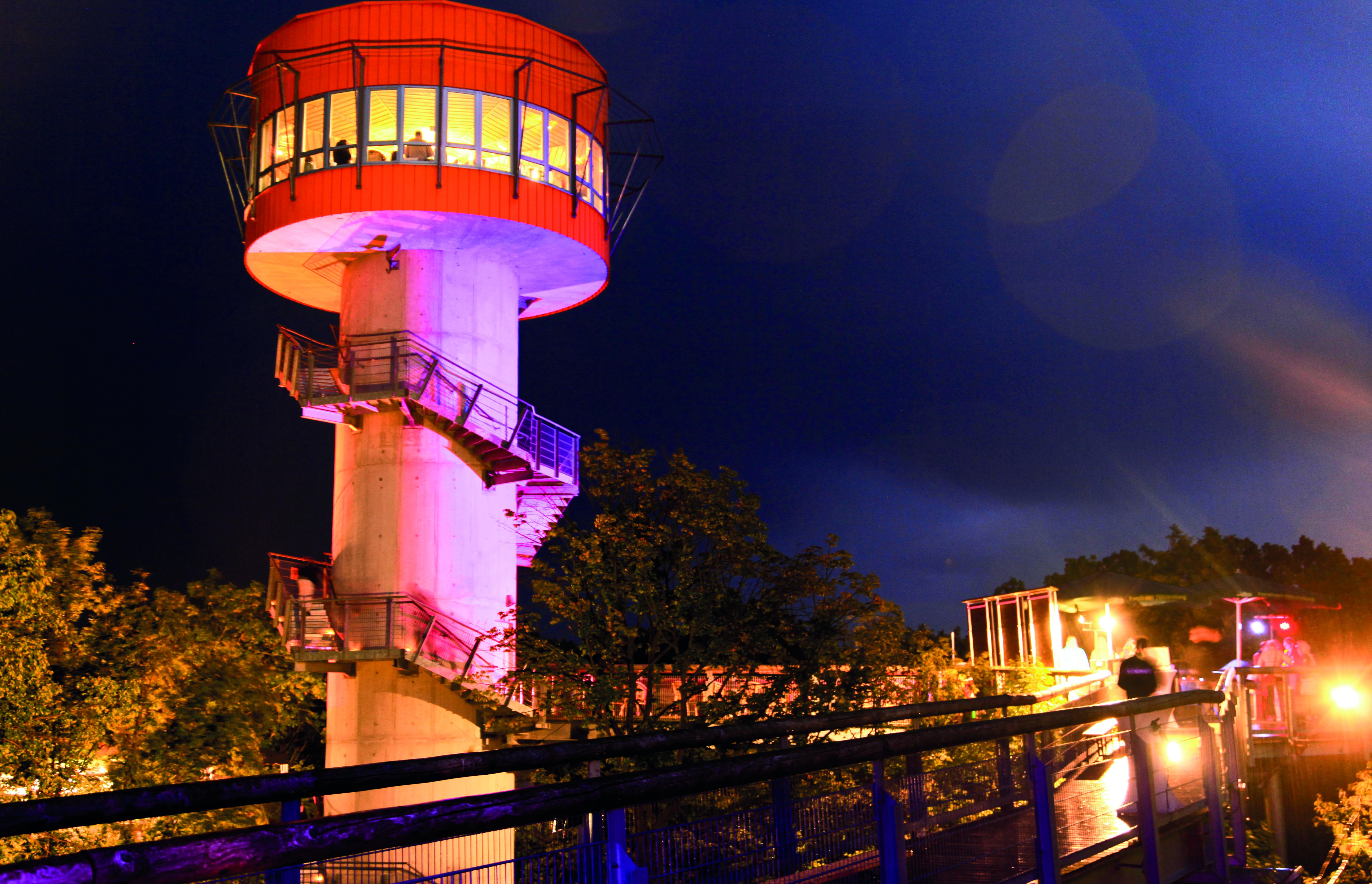 Höhengenuss auf dem Baumkronenpfad Turm beleuchtet